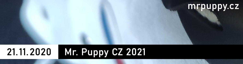 21. 11. 2020 - Mr. Puppy CZ 2021